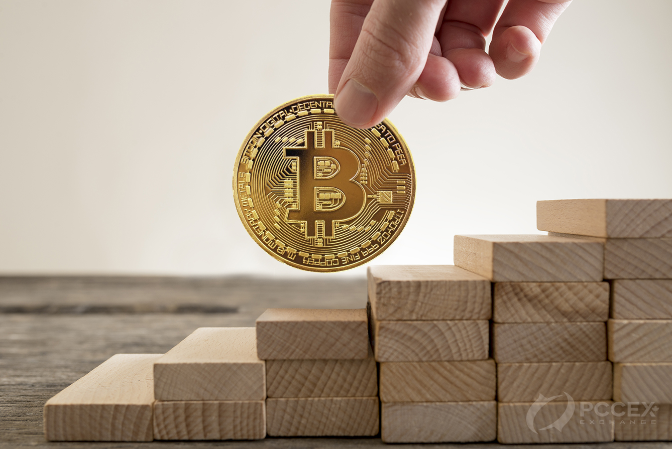 Bitcoin Price - 2020 - PCCEX Current pricwe and trends in ...